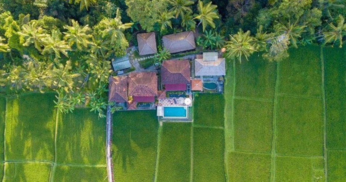 Retreat in between rice fields